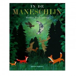 In de maneschijn | Prentenboek -