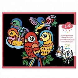 Kleuren met fluweel Babyvogels   Djeco -